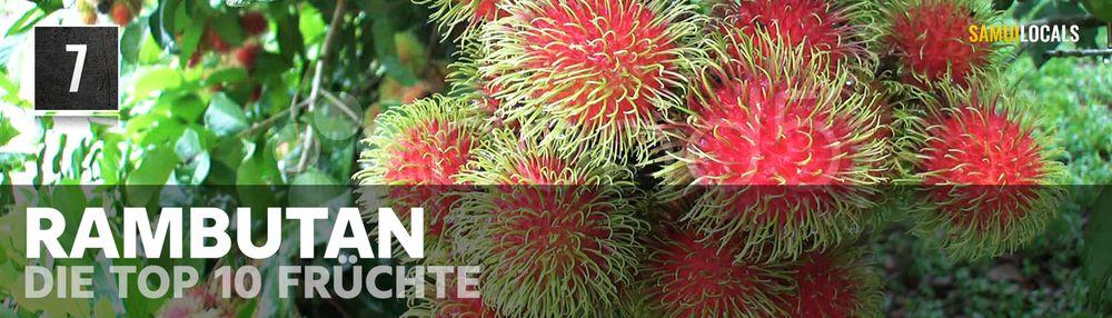 TOP_10_Früchte_in_Thailand_7
