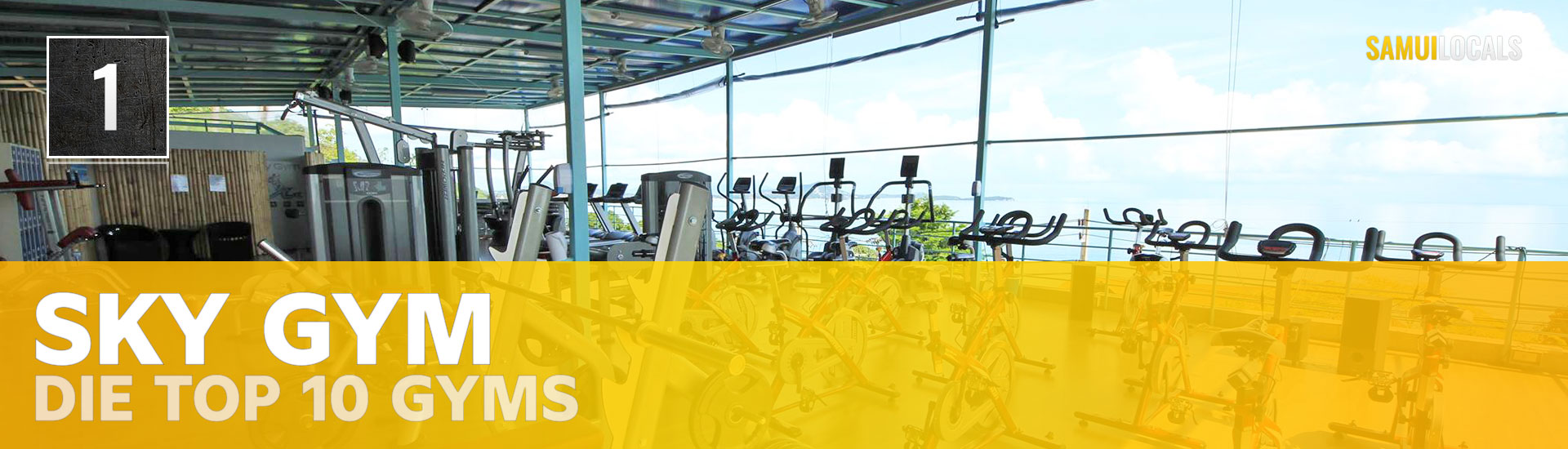 Top_10_gyms_sky_gym