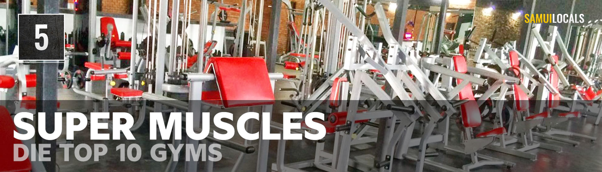 Top_10_gyms_super_muscles