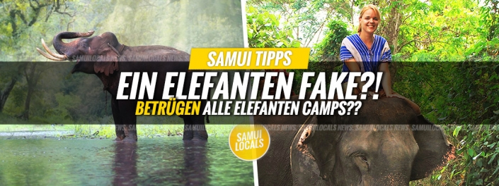 koh_samui_elefanten_auffangstation_fake