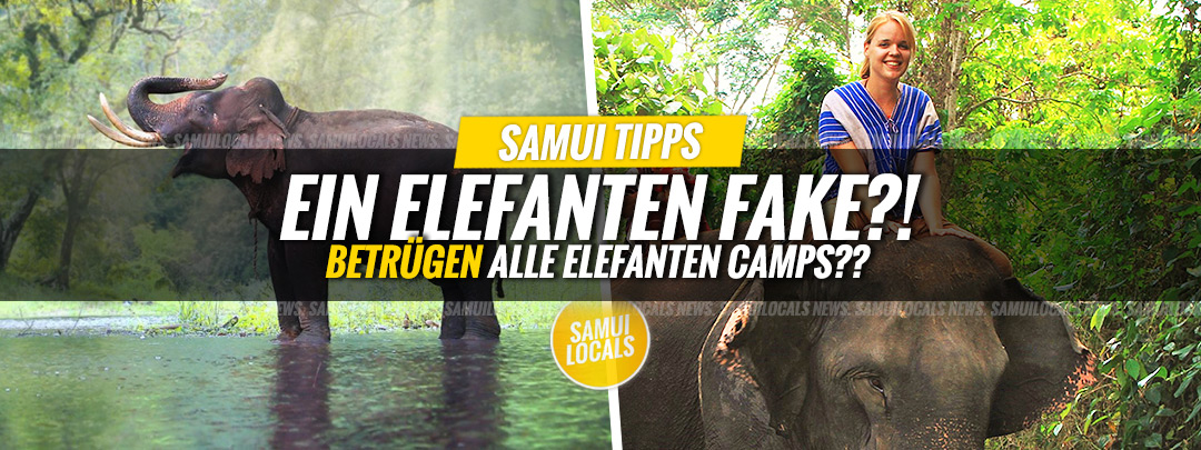 koh_samui_elefanten_auffangstation_fake
