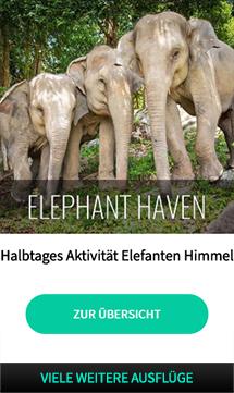 koh_samui_elefanten_auffangstation_haven