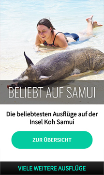 koh_samui_ausflug_schweine_insel