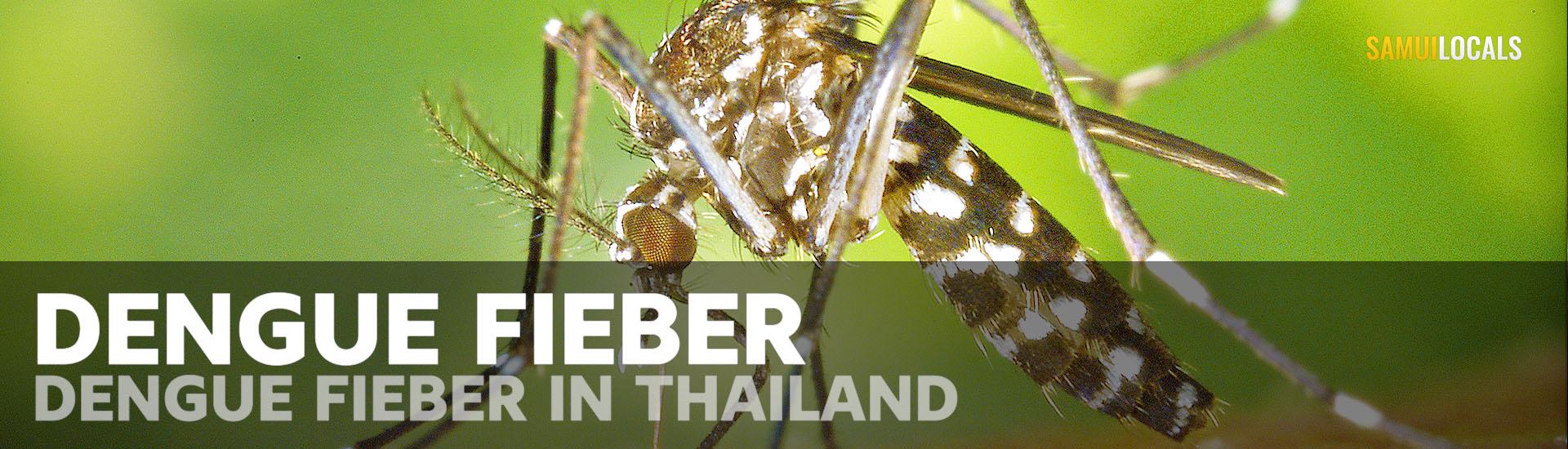 dengue_fieber_thailand_koh_samui_mücke_mückenspray