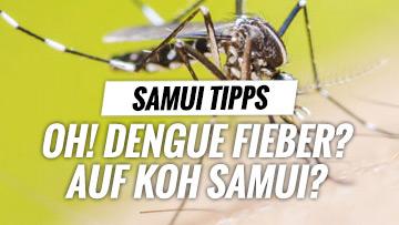 dengue_fieber_thailand